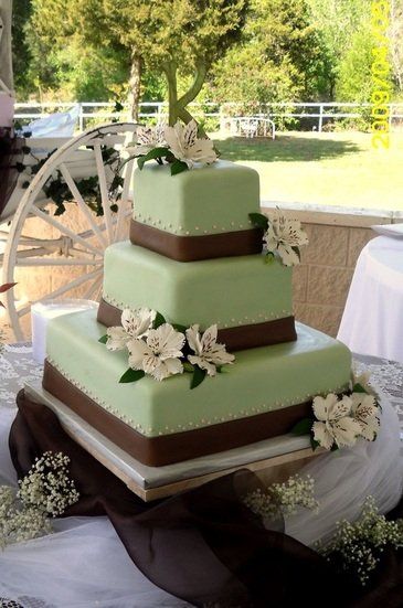Green Wedding Cakes The Knot A Wedding Cake Company